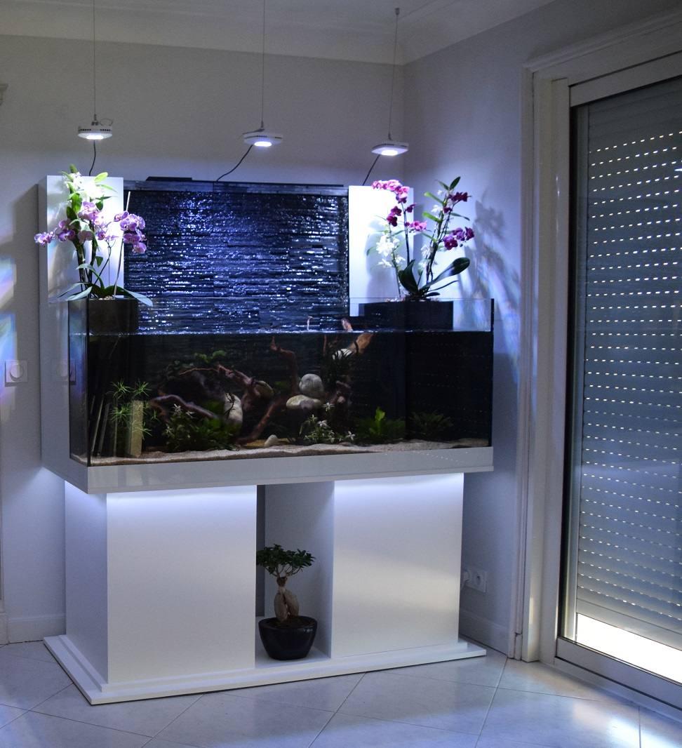 aquarium encastrable dans un mur excellent img with aquarium encastrable dans un mur fabulous. Black Bedroom Furniture Sets. Home Design Ideas