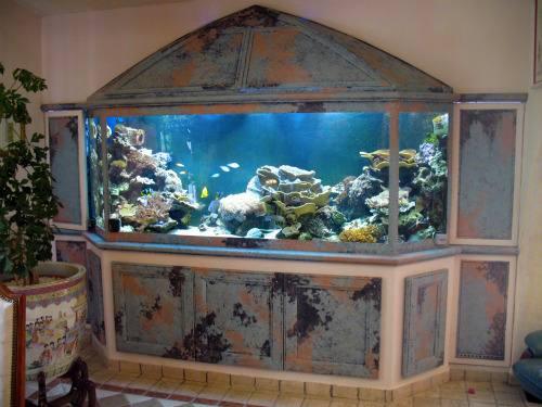 fabrication vente aquariums eau de mer recifal odyssee aquarium odyssee v 233 g 233 tale
