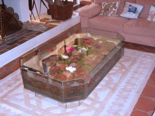 Fabrication vente aquariums eau douce odyssee aquarium - Fabriquer table basse aquarium ...