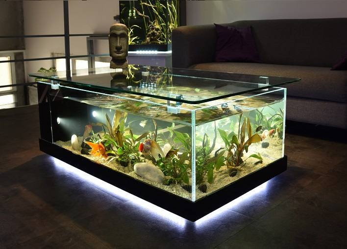 Table basse aquarium avis for Aquarium eau douce pas cher