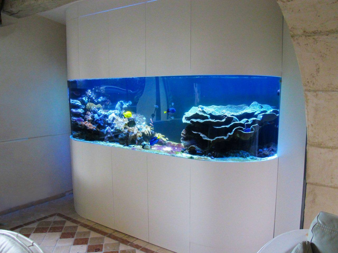 fabrication vente aquariums eau de mer recifal odyssee aquarium odyssee v g tale. Black Bedroom Furniture Sets. Home Design Ideas
