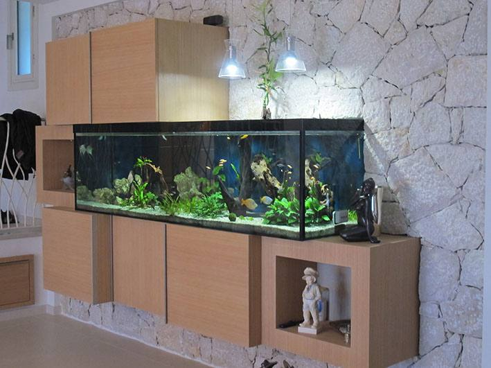 Fabrication vente aquariums eau douce odyssee aquarium for Aquarium eau douce pas cher