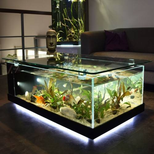 table_aquarium_1280