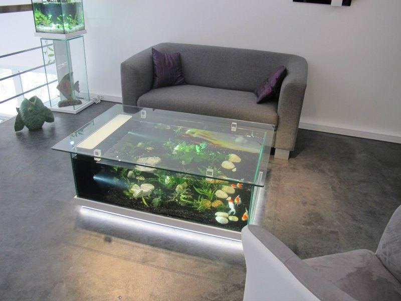 Good je veux trouver une table basse design et de bonne qualit pas cher ici table basse aquarium - Aquarium table basse de salon ...