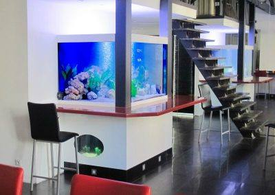 Bar aquarium sur mesure-800