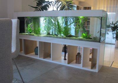 aquarium d'eau douce sur mesure