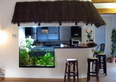 aquarium-decoration-17