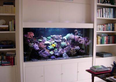 aquarium-design-21