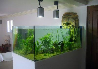 aquarium-design-23