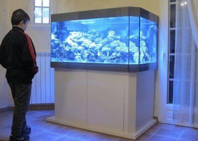 aquarium eau de mer 06