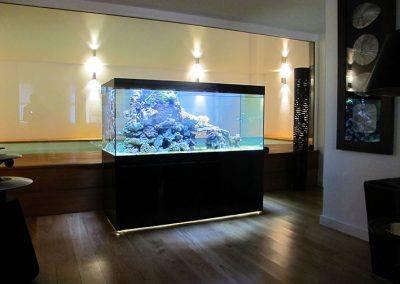 aquarium eau de mer 2