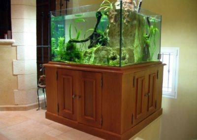 aquarium-en-l-11-81