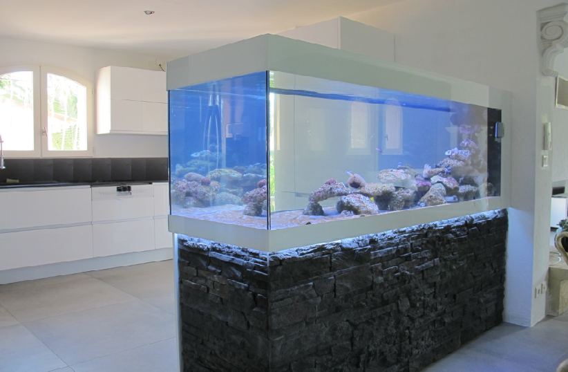 Fabrication vente aquariums eau de mer recifal odyssee for Meuble aquarium design