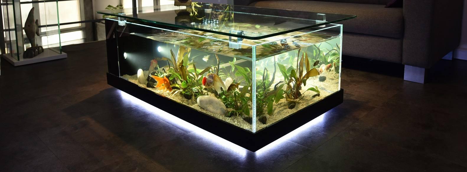 Aquas odyss e aquarium odyss e v g tale fabricant for Aquarium cadre