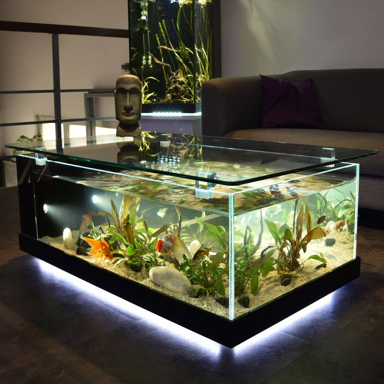 Odyssee aquarium odyssee v g tale table aquarium noire for Table salon aquarium