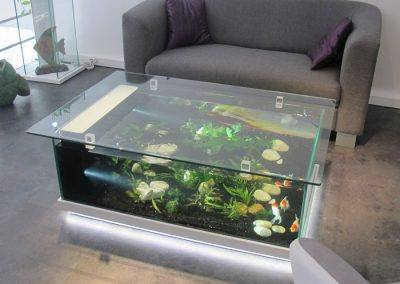 Table aquarium Amazone blanche 2