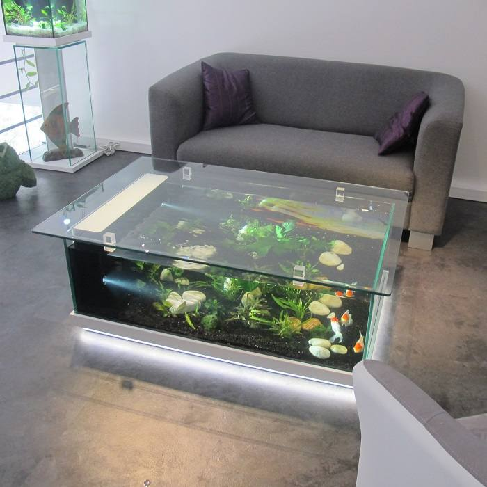 Awesome aquarium en table basse images for Table salon aquarium
