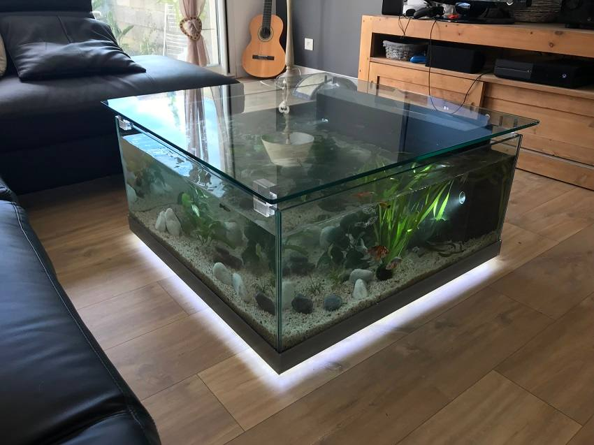 Table basse aquarium odyssee aquarium odyssee v g tale - Aquarium table basse de salon ...