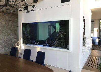 aquarium eau douce 5