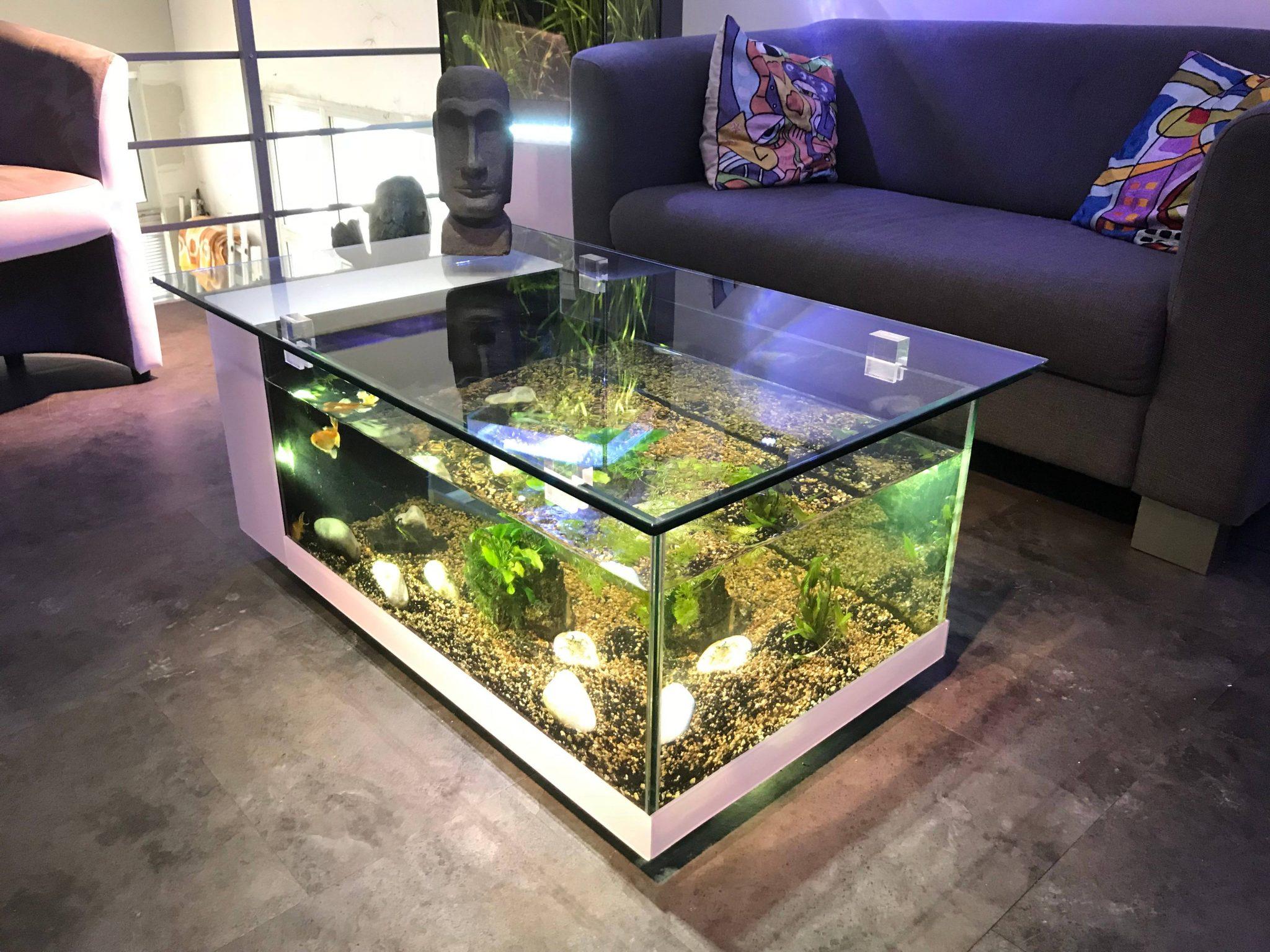 Table Basse Aquarium Jardiland