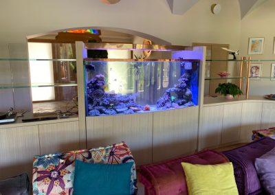 aquarium citre eau de mer installe a Aix en Provence